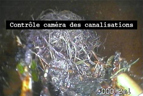 Inspection TV de canalisations – pénétration de racines